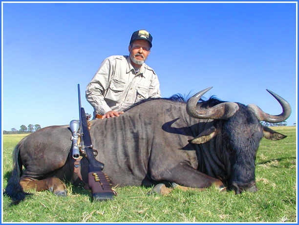Tony's Blue Wildebeest 1
