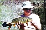 This carp was taken on a white cottonwood seed fly in 2 feet of water.  I had been trying (on and off) for two years to take carp on the fly.