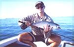 I caught this small Mac tuna off Mooloolabah on the Sunshine Coast, QLD, Australia.  Its only a small one but even at this size they are very fast and strong.