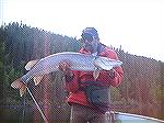 Northern Pike on fliesNorthern Pike on the flyPictures are property of Guides For Hire