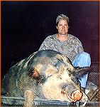 This monster wild boar was recently killed by Riley Clark on the White Oaks Plantation in Georgia. It weighed 695 incredible pounds.