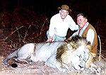 SCI founder C.J. McElroy (left) and Bill Quimby with lion Quimby  took in Zambia''s Mumbwa East concession in 1994.zambia lionbill quimby