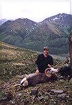 Greg Kruger''s first ram taken on a fly in hunt near Dease Lk. B.C.more stone sheepjoebuck