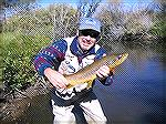 22' brown trout caught on the Illinois River in North Park Colorado using streamer--Thanks North Park Anglers!.