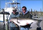 Joe Zimmer of Berlin, Maryland (left) caught this 56-pound striped bass jigging a bucktail just off the beach at Cape Hatteras. Winter 2010.