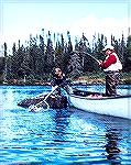 Chuck Edghill plays a brook trout caught in the Parke Lake area of the Eagle River in Labrador.