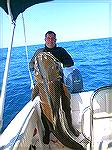 172# Cobia Spear fishing on the coast of Brazil